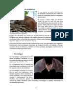 Catalogo de La Flora y La Fauna