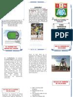 TRIPTICO AGUSTIN GAMARRA.docx