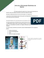 Informe 1 Microscopía Electrónica