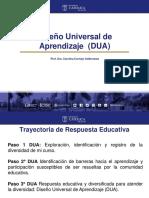 Diseño Universal de Aprendizaje DUA.pdf