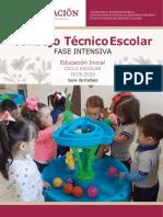 Guia Consejo Tecnico EINE (1)