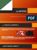 La mitosis y meiosis basica
