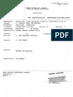 Exp. 00278-2015-7-1826-JR-PE-04 - Anexo - 07381-2019 (4) CHANGCHU.pdf