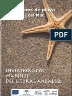 Cuaderna Invertebrados Kit Correlimos