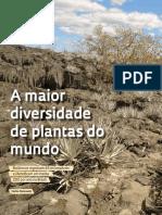 042-047_Botanica_241.pdf