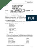 11-Opinion Tecnica-plan de Trabajo