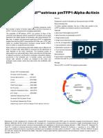 PmTFP1 Alpha Actinin