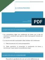 Elección Consumidores.pdf