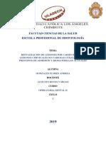 RSU OPE III.pdf