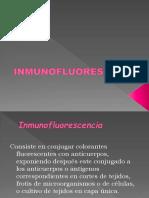 inmunoflorescencia