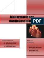 Seminario de Malformaciones Cardiovasculares