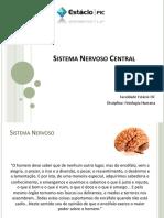 - Sistema Nervoso Central (Rogério Natal)-1-1