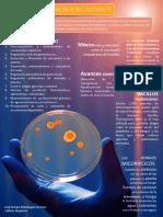 Infografia Microorganismos