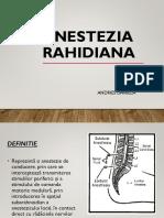 ANESTEZIA-RAHIDIANA