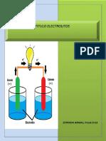 317397162-INFORME-4-electrolitos-docx (1).docx