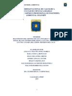 Diagnostico Del Limon (1)_fin