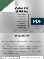 catalasa (1)