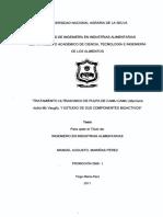 FIA-199.pdf