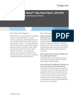 6424_The Forrester Wave™_ Big Data Fabric, Q2 2018