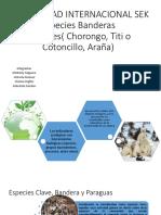 especies-bandera-del-ecuador-1.pdf