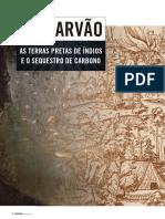 biocarvao281.pdf