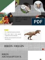 Birds - Zoology