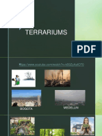 Terrarium - Succulents