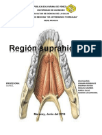 Region Suprahioidea