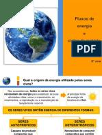 Fluxos de Energia e Ciclos de Matéria (1)