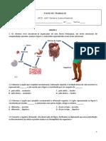 Ficha Trabalho Sistema Gastrointestinal