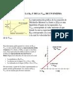 CÁLCULO DE actividad enximática.docx