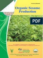 Organic Sesame Production