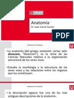 Historia Anato