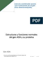 Inmunodeficiencia Combinada Severa Producida Por Mutaciones en El