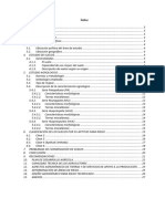 2. Memoria de Estudio Agrologico PMHH_expe Tecnico
