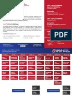 malla-Contador-auditor.pdf