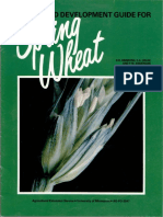 Growth and Development Guide for Spring Wheat