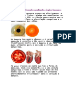 Alimentos Com Formato Semelhante a Órgãos Humanos