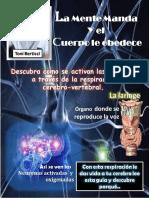 264266400-Guia-activacion-de-las-neuronas-pdf.pdf