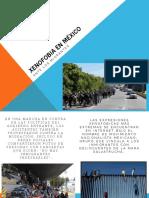 Mala Gestion de Medios Electronicos Xenofobia en Mexico E4