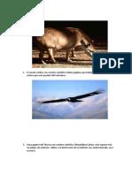 Especies en peligro de extinción eoclogia.docx