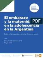 Dt.5 El Embarazo y La Maternidad en La Adolescencia en Argentina