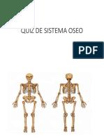Quiz de Sistema Oseo