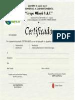 Certificado Modelo ORIGINAL