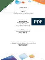 Algebra Lineal Indivudual-completo