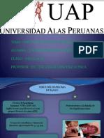 Vph Virus Papiloma Humano