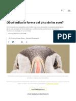 ¿Qué Indica La Forma Del Pico de Las Aves