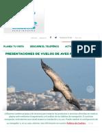 Presentaciones de Vuelos de Aves Rapaces -