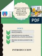 Endulzamiento Del Gas Natural Mediante Aminas.a.