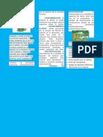 folleto de informatica.docx